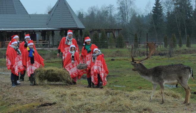 Novēlējumu konkurss – balvā iespēja apmeklēt briežu dārzu un Ziemassvētku vecīša rezidenci